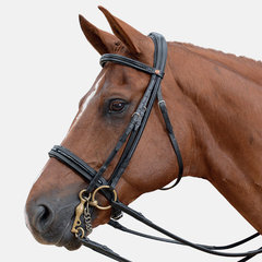 Albion Weymouth Bridles