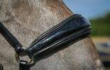 Shine drop noseband bridle Black Bridle & Ride _