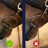 Watertrens elliptical dubbel gebroken Pony Trust_
