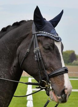 Double Bridle rolled leather with Crystal browband B2F