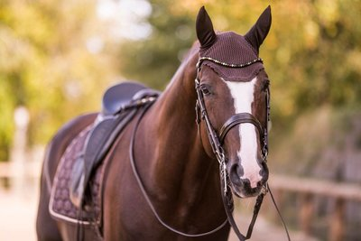 Bling Swing Fennel Dream : Magic Tack Wave-browband without loop