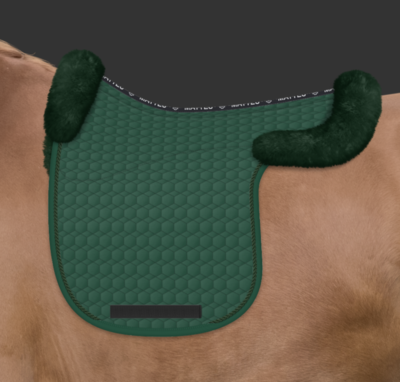 Contour Dressage pad with wool Mattes