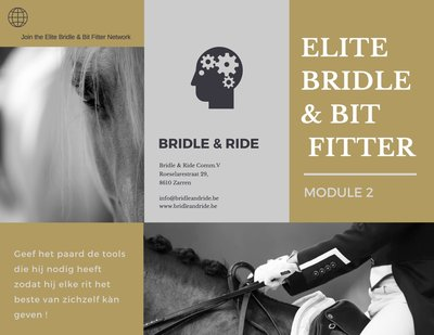 Elite Bridle & Bit Fitter : Module 2