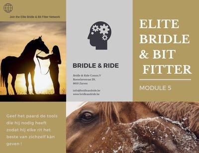 Elite Bridle & Bit Fitter : Module 5
