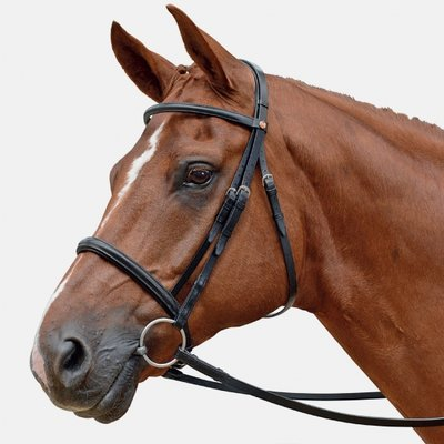 Eventer Snaffle Bridle Albion