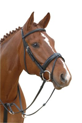 Starter Snaffle Bridle Albion