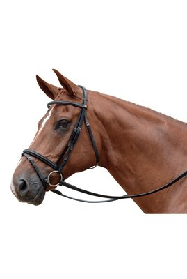 Eventer Snaffle Bridle Albion with flash