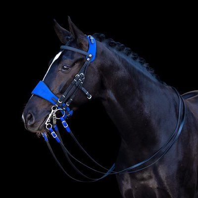 Equibridle Blue Lagoon Weymouth Black