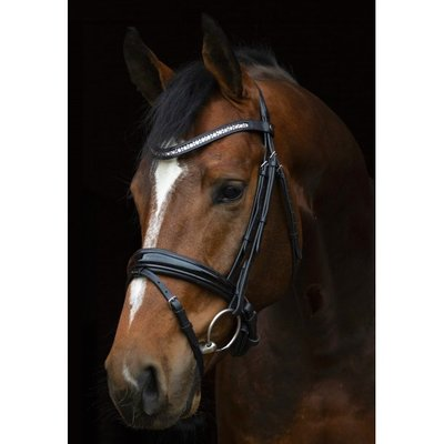 SD CROWN MAGIC TOUCH BRIDLE IN BLACK/BLACK PATENT